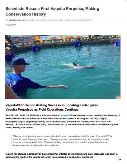 Scientists Rescue First Vaquita Porpoise